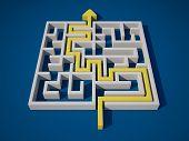 Solving the Maze
