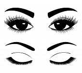 picture of black eyes  - Black silhouettes of eyebrows and eyes isolated on white background - JPG
