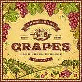 stock photo of grape  - Vintage grapes label - JPG