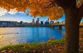 foto of highrises  - View of Portland Oregon overlooking the willamette river on a Fall Afternoon - JPG