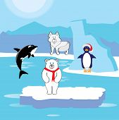 stock photo of polar bears  - Arctic animals - JPG