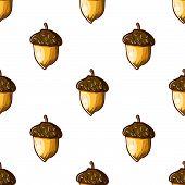 picture of hazelnut tree  - seamless background with hazelnuts  hand drawn illustration - JPG