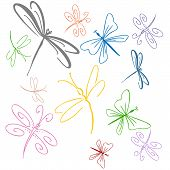 stock photo of dragonflies  - An image of a dragonfly set art object - JPG