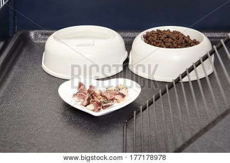Detail of food for all day care of ferrets