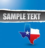 lonestar state blue ripped banner