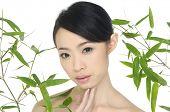 Постер, плакат: Красивая женщина Азии и зеленый бамбук