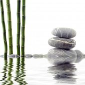 Reflection for tranquil view of bamboo with a stack of stones