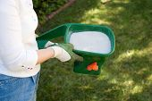 picture of spreader  - Woman takes care about her lawn fertilizing with handheld crank spreader in front yard - JPG