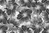 Tropical Pattern. White And Black Exotic Summer Flower Vector Background. Beauty Fasion Monstera, Pa poster