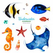 Underwater Creatures. Watercolor Collection With Multicolored Coral Fishes.shells,seahorse,starfish  poster