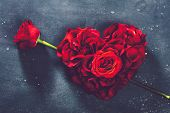 Heart-shaped roses and rose flower on grey background. Valentines Day. Symbol of love and romance. poster