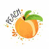 Vector Hand Draw Peach Illustration. Orange Ripe Peaches With Juice Splash Isolated On White Backgro poster