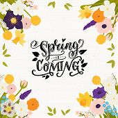 Spring Is Coming Calligraphic Inscription Made In Vector. Floral Frame Made Of Hand Drawn Spring Flo poster