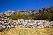 Structure. Montenegro