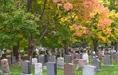 Cemetery With Fall Trees