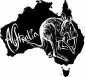 Kangaroo As Australian Symbol