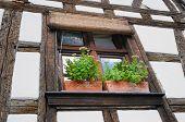 Fenster der Fachwerk-Gebäude