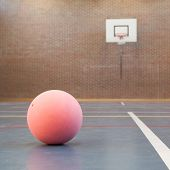Pink Ball On Blue Court At Break Time