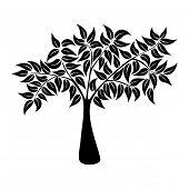 Natürlichen Baum Symbol Silhouette