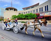 NASHVILLE - JUNE 14:A horse-drawn carriage passes the Country Music Hall of Fame and Museum June 14,