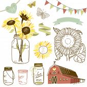 stock photo of sunflower  - Glass Jars - JPG