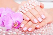 stock photo of pedicure  - manicure and pedicure. body care, spa treatments
