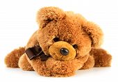 picture of teddy  - Toy teddy bear isolated on white background - JPG