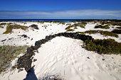 Spain White  Beach  Spiral Of Black Rocks