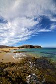 Beach  Water  Coastline And Summer In Lanzarote Spain