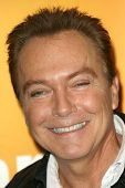 David Cassidy  at the Disney And ABC Television's 'DATG Summer Press Junket'. Riverside Building, Bu