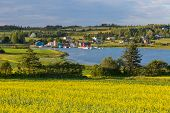 Summer landscape with canola fields and fishing  boats at French River in central Prince Edward Isla