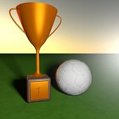 Cup For Soccer