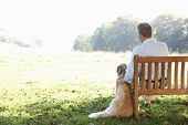 stock photo of rest-in-peace  - Senior man sitting outdoors with dog - JPG
