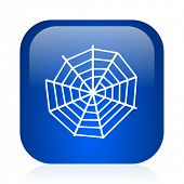 spider web icon
