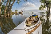 Corgi dog in a decked expedition canoe on a lake in Colorado, a distorted wide angle fisheye lens pe