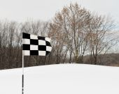 Checkered golf flag in winter