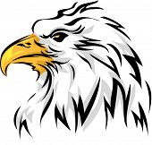 Mascot Illustration Featuring an Eagle