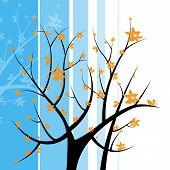 Tree Nature Indicates Light Burst And Blazing