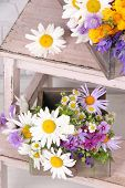 Beautiful flowers in crates on small ladder on light background