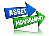 Asset Management In Arrows