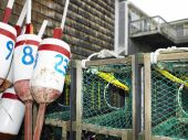 Lobster Traps And Markers