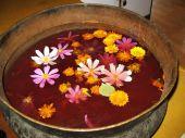 Tibetanmedicine