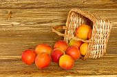 Ripe Apricots Scattered From A Basket