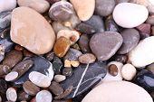 Sea stones as background
