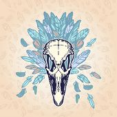 Ostrich Skull Vintage Aged Plumage
