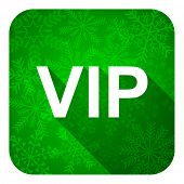 vip flat icon, christmas button