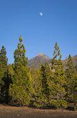 Moon Over Mount Teide