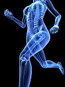 foto of human body  - 3d rendered x - JPG