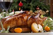 picture of kumquat  - Citrus glazed roasted duck stuffed with rice garnished with apples kumquats and sage - JPG
