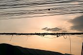 Sunset With The Electric Wire